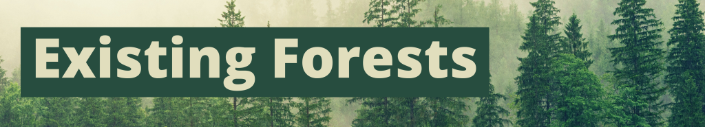Existing Forests
